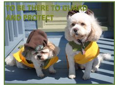 LINE 10 OF THE PUP SCOUT PLEDGE JOIN PUP SCOUTS TODAY AT http://www.pupscoutsusa.com/