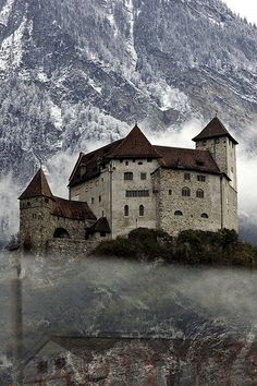 .Vaduz Castle, Liechtenstein.  So close but ran out of time :(