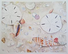 Jewels in the Sand #2- original watercolor painting of shells in the sand by SusanHorsey on Etsy