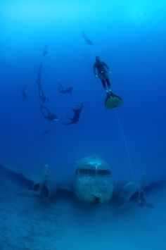 Mr Nekrasov, from Odessa in Ukraine, and a group of divers from Russia explored the almost perfectly preserved wreckage using no breathing apparatus. | This Sunken World War II Plane Is The Perfect Underwater Playground