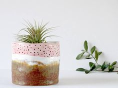 Ceramic Plant Pot - Small Ceramic Planter A modern mini planter ideal for any window ledge, desk or dressing table. A hand thrown vessel, this design has been hand painted and kiln fired. Each plant pot is individually designed and perfect for indoor flowers, succulents, cacti, herbs or air plants.  This pot would also make a super little pin pot or trinket dish for little pretty things. It has been hand glazed and kiln fired in my home studio. It has a beautiful organic shape and has been…