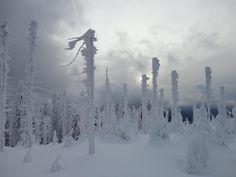 Lysá hora 2012