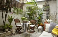 Liz's urban garden is filled with potted plants and comfy textiles