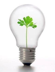 for Crowdfunding & Fundraising Websites Green Marketing, Fundraising Websites, Permaculture Design, Graphic Design Company, Social Entrepreneurship, Corporate Social Responsibility, Social Business, Social Enterprise, Eco Friendly House
