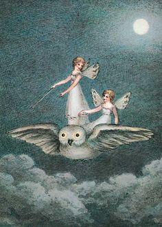 Fairies Riding Owl | Birthday Greeting Cards