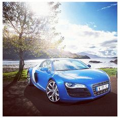 Too Filthy!! #audi #r8 #blue #tree #sky #car #fast #rims #audir8 - @mryoungmoney- #webstagram
