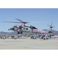 An MH-60S Sea Hawk helicopter lifts off from Camp Pendleton Canvas Art - Stocktrek Images (33 x 24)