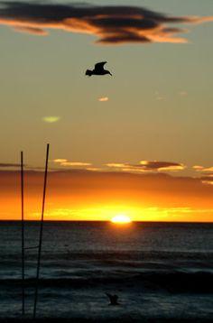 30 Ideas De Amaneceres En La Playa Playa Vistas Amanecer