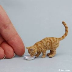 "1,497 Likes, 65 Comments - Kerri Pajutee (@kerripajutee_miniatureanimals) on Instagram: ""Miniature 1:12 cat sculpture of polymer clay & natural fiber. #miniaturesculpture #oneinchscale…"""