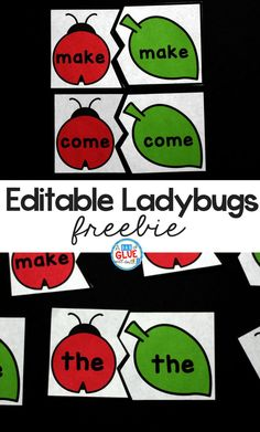Ladybug Editable Sight Word Puzzles -
