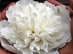 fondant torta virág paszta bazsarózsa peony gumpaste