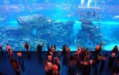 largest Dubai-Mall-Aquarium
