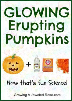 Glowing erupting pumpkins Halloween fun. @Lisa Phillips-Barton Johnson thought Carl would enjoy! :)