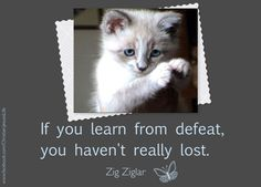 When we learn from defeat we are winners, not losers.