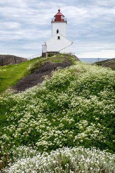 Langøytangen Fyr, Lighthouse