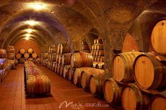 Wine Cellar - Best Sellers - Collection
