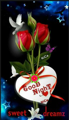 Good Morning Thursday Images, Jehovah Paradise, Good Night My Friend, Good Evening Greetings, Good Night Sleep Tight, Night Wishes, Good Night Image, Good Night Quotes, Morning Light