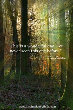 This is a wonderful day. I've never seen this one before - Maya Angelou