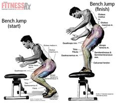 Build Explosive Lower Body Power With Bench Jumps Leg Workouts For Men, Fun Workouts, Workout Routines, Vegetarian Bodybuilding, Bodybuilding Training, Fitness Tips, Fitness Motivation, Leg Training, Muscle Anatomy