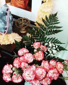 """Las flores de Guruji de la primera semana -completa- de septiembre'16: clavelinas.  """"Yoga es el proceso de cambiar patrones viejos por patrones nuevos y más apropiados"""" T. Krishnamacharya. #ashtangayoga #ashtanga #ashtangayogabilbao #bilbao #guruji #bhakti #flores"""