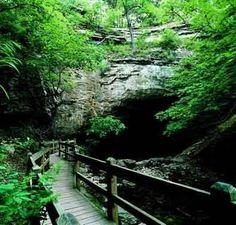Rock Bridge State Park in Columbia Missouri