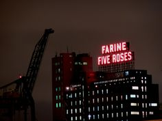 The Farine Five Roses sign atop the Ogilvie Flour Mill Flour Mill, Of Montreal, Most Beautiful Cities, Parcs, Street Photography, Roses, Sugar, Chocolate, Landscapes