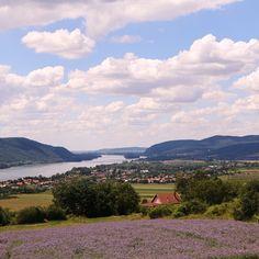Natura Hill Zebegény Hungary