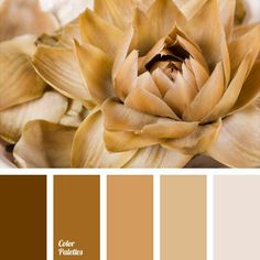 Color Palette Monochrome color gamma of brown and beige shades is complemented by a translucent pearl color. This palette suits well exterior finish of a country house,. Colour Pallette, Colour Schemes, Color Patterns, Color Combinations, Combination Colors, Warm Colors, Pastel Colors, Colours, Pantone