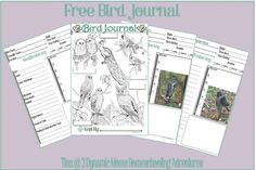 printable bird journal & notebooking pages
