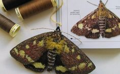 Agnes-and-Cora-Embroidered-Mint-Moth-480x300.jpg (480×300)