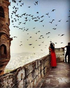 Tour Query:  http://vacation9.co.nz/tours | Mehrangarh fort , Rajasthan.