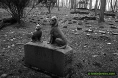 Pet Cemetery in Blairstown New Jersey by lostinjersey, via Flickr