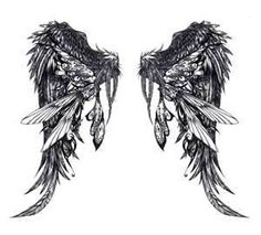 valkyrie wings....if I ever got wings on my back this is what I would want them to look like!