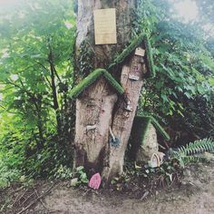 A special fairy walk #annabellestravels #childrensfantasy #magic #summer #happiness #nature #soothing #inspiration #healing #green #childhoodmemories #walking #wicklowmountains #fairytrails #feelingbetteralready Childhood Memories, Fairy, Walking, Happiness, Magic, Fantasy, Outdoor Decor, Green, Nature