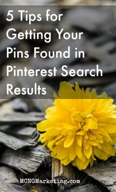 5 Tips for Getting Your Pins Found in Pinterest by Vincent Ng. www.MCNGMarketing.com/episode8