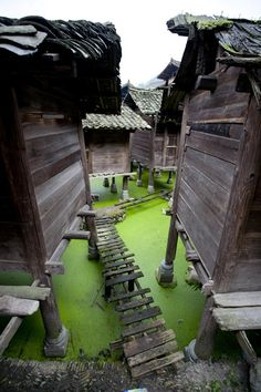 A village in Guizhou, China. Guizhou is a mountainous province in southwest China. It's known for its ancient rural villages, traditionally inhabited by minority groups like the Miao and Dong. It's also famed for its 74m-high Huangguoshu Waterfalls. Nearby, Dragon Palace Cave is an extensive underground system with waterways. Zhijin Cave's vast caverns house colorful karst formations. Outside Guiyang, the capital, is the 14th-century Qingyan fortress and town. (V)