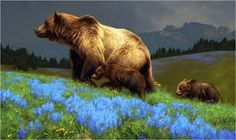 Summertime Blue - Grizzly bear painting by Greg Beecham