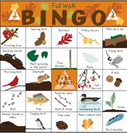 Play Nature Bingo at a Mass Audubon Wildlife Sanctuary near you! Print out the cards & see if you can be the first to find all the items in a row, column, or corner to corner! We have Bingo cards with year-round and seasonal nature themes. Physical Activities For Kids, Hands On Activities, Winter Activities, Daisy Scouts, Girl Scouts, Bingo For Kids, Hiking With Kids, Autumn Nature, Forest School