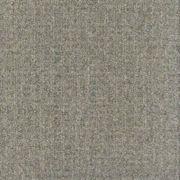 Biscuit's Carpet Tiles - CCA