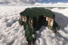 ギアナ高地/ベネズエラ