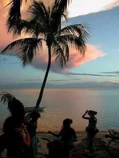 Polynesia sunset at the beach with pink clouds behind a palm