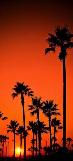 Newport Beach, Calif mother nature moments