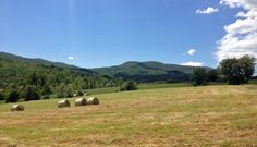 Piacenza hills #italianvelotours #bici