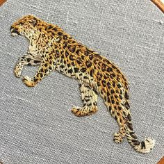 Amur Leopard, Thread Painting, Endangered Species, Beautiful Creatures, Needle Felting, Hoop, Embroidery, Projects, Handmade