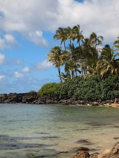 Laniakea Beach (Turtle Beach), North Shore of Oahu, Hawaii - Always stop here with the kids to feed the turtles.