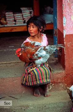 Innocence - Little girl keeping an eye on her parent's hen at the morning market of San Cristobal Totonicapan, Guatemala (picture taken during summer of by Olivier Schram Kids Around The World, People Around The World, Precious Children, Beautiful Children, Central America, South America, Mexico People, Mexico Culture, Foto Art