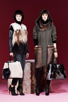Fendi Pre-Fall 2013 Fashion Show Collection