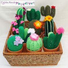 Cactus en maceta de barro nº 8.