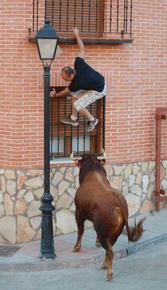 Escalando  Cavalcade  en la  calle  de  taureau  **+