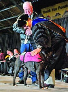pit-bull-recibe-el-diploma-de-graduacion-de-su-difunto-amo 02